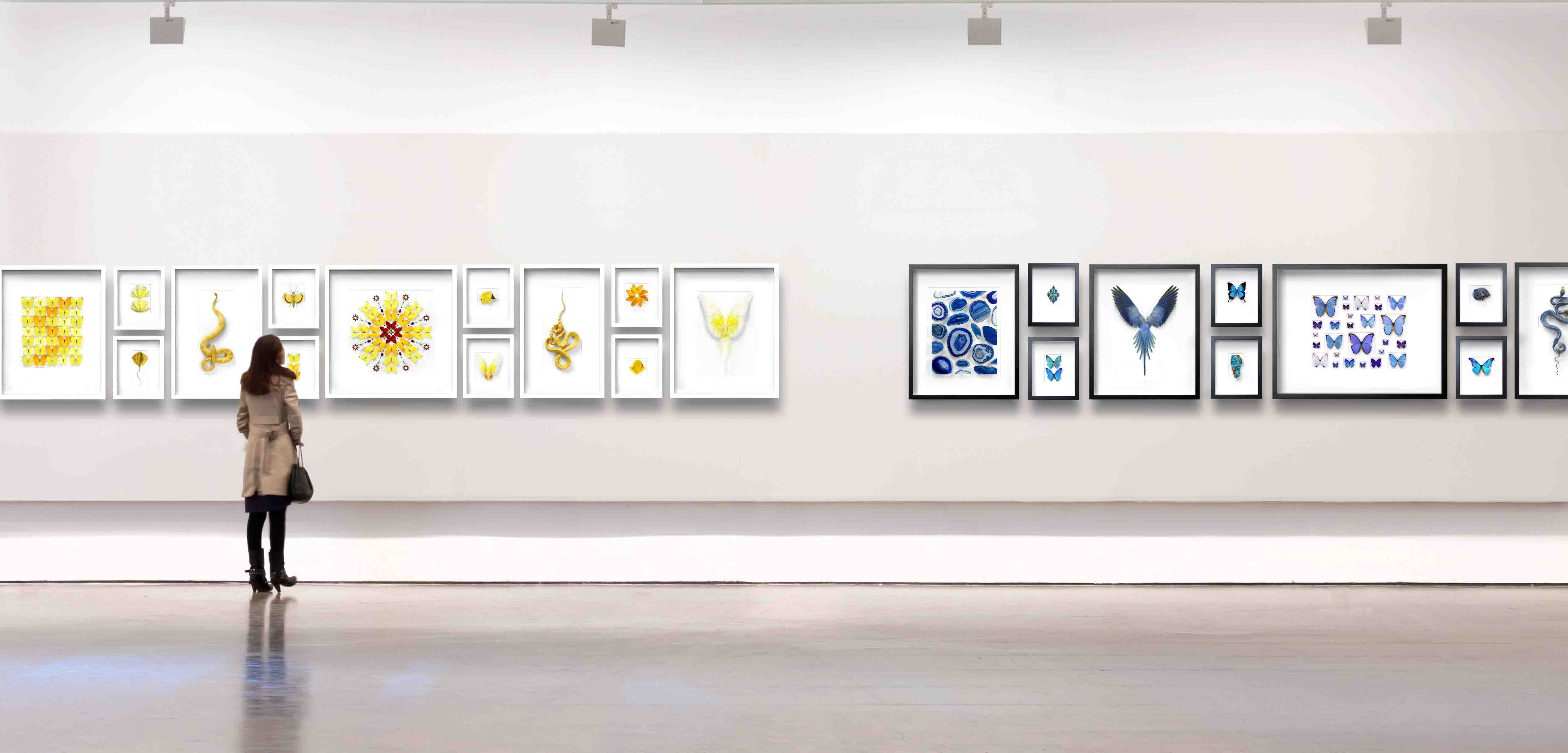 11-Yellow-Grouping-Blue-Grouping